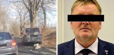 Na posesji Waldemara B. znaleziono zwłoki psa. Prokuratura wnioskuje o areszt [AKTUALIZACJA]-8209