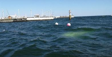 Sopot: w okolicy molo zatonęła łódź. Akcja ratunkowa policji-9244