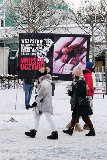 Kolejna pikieta fundacji Pro - Prawo do życia! Kontrowersyjne treści pojawiły się przy sopockiej choince-462