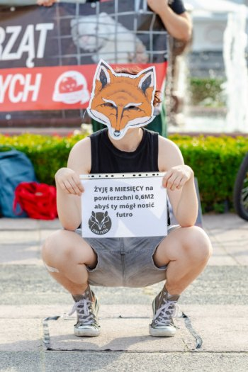 Sopot: sprzeciw wobec hodowli zwierząt na futra [FOTO]-588