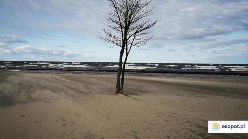Sztorm w Sopocie - Plaża i molo 29 marzec 2020